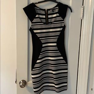 Express Form Fitted Dress